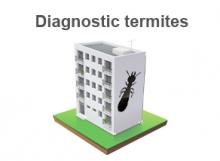 termites immeuble