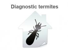 termites travaux